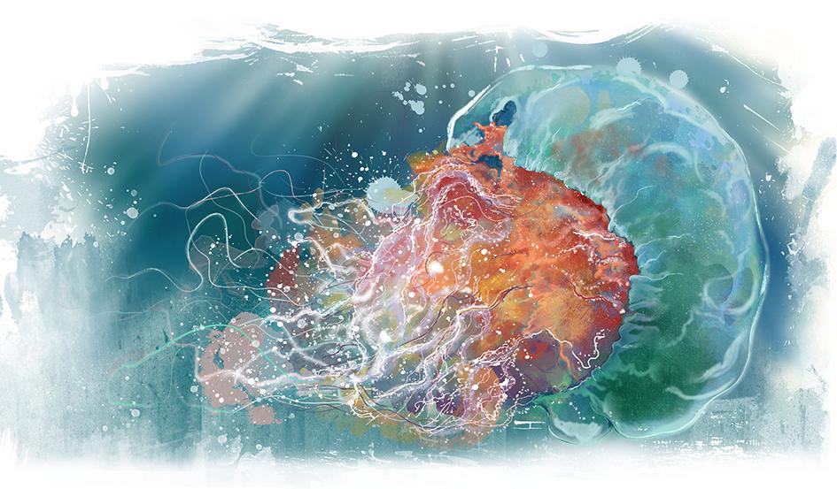 medusa A3