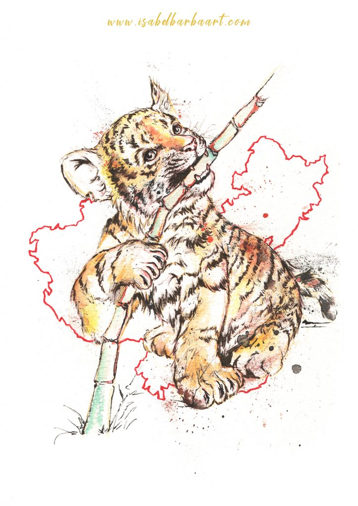tigre amur bebe ilus